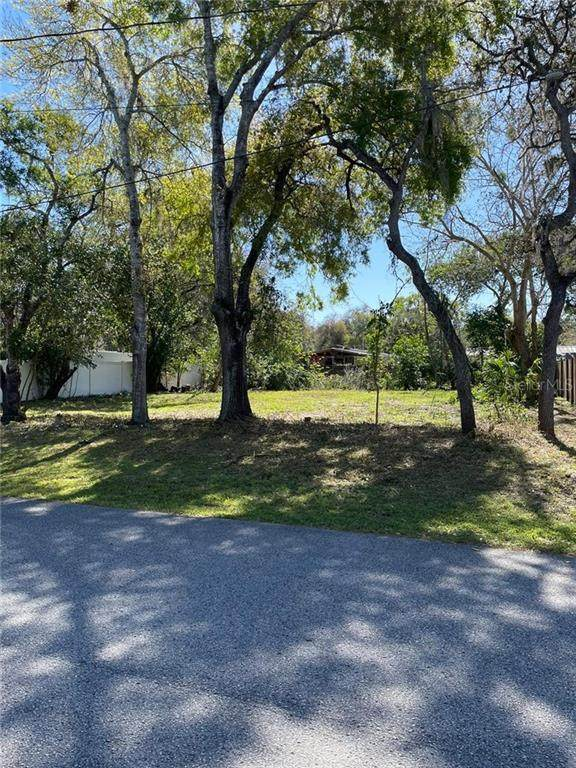 12456 Lantana Avenue, New Port Richey, FL 34654 (MLS #T3295902) :: Vacasa Real Estate