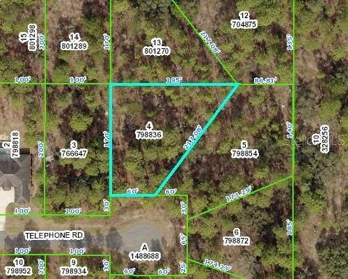 11333 Telephone Road, Weeki Wachee, FL 34614 (MLS #T3298026) :: Vacasa Real Estate