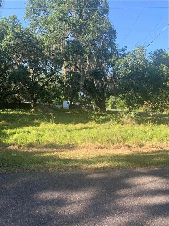 3808 Ruth Ave, Brandon, FL 33511 (MLS #T3299102) :: The Robertson Real Estate Group