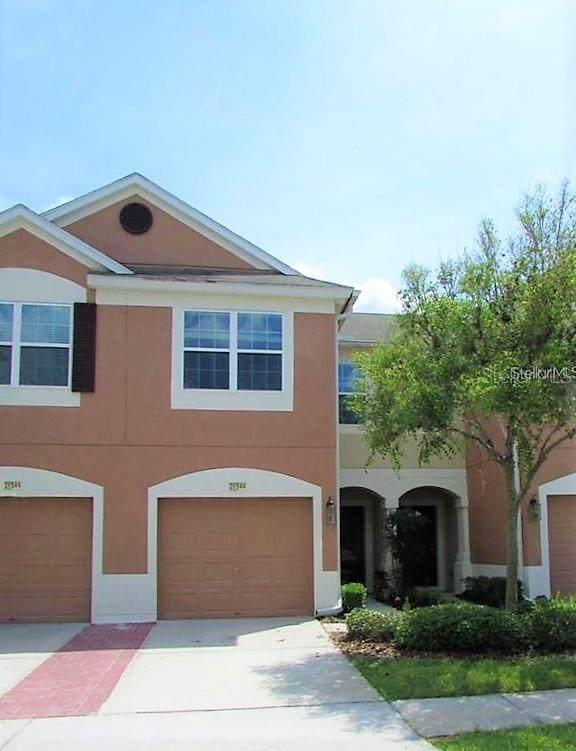 26544 Castleview Way, Wesley Chapel, FL 33544 (MLS #T3299808) :: Team Bohannon Keller Williams, Tampa Properties