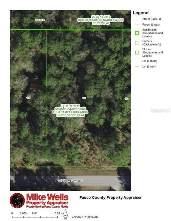2791x Green Willow Run, Wesley Chapel, FL 33544 (MLS #T3300280) :: The Duncan Duo Team