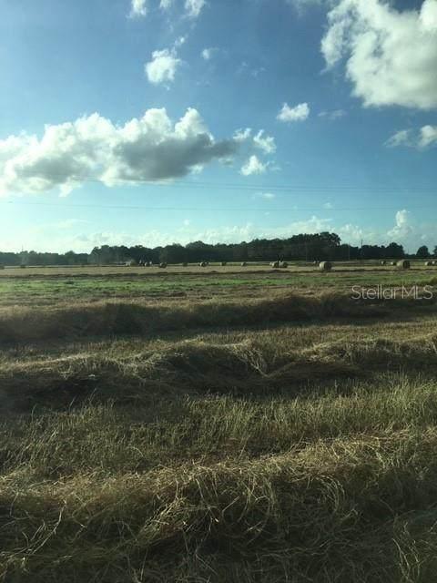 3005 English Road, Plant City, FL 33567 (MLS #T3300293) :: Dalton Wade Real Estate Group