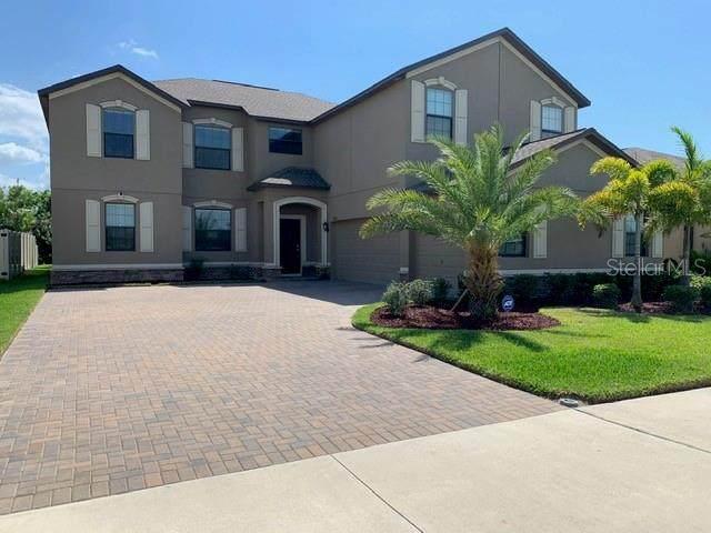 9822 Smarty Jones Drive, Ruskin, FL 33573 (MLS #T3300348) :: Frankenstein Home Team