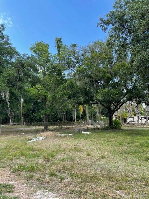 5321 Hollyberry Court, Dover, FL 33527 (MLS #T3300553) :: Medway Realty