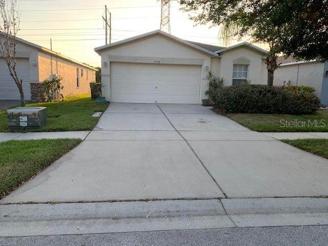 7958 Carriage Pointe Drive, Gibsonton, FL 33534 (MLS #T3300568) :: The Light Team