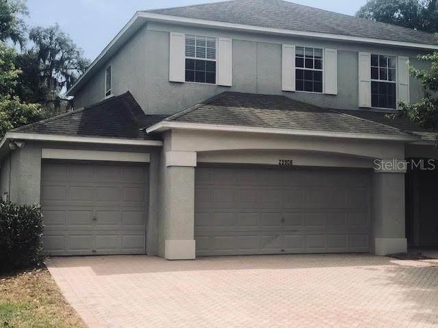 29908 Cedar Waxwing Drive, Wesley Chapel, FL 33545 (MLS #T3300579) :: Pristine Properties