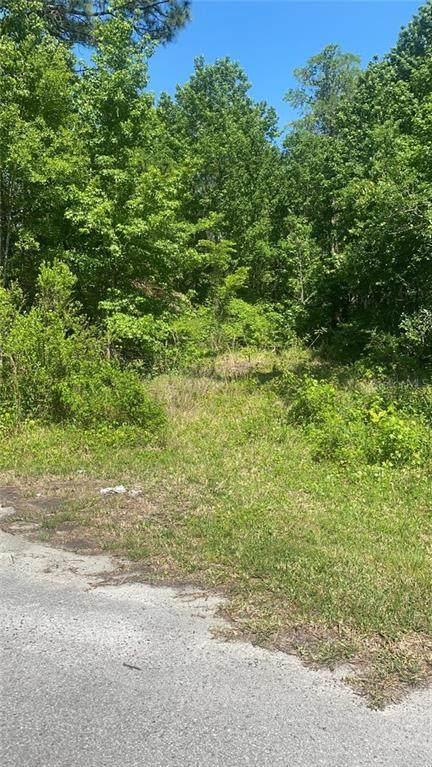 Olsen Street, New Port Richey, FL 34654 (MLS #T3301158) :: The Lersch Group