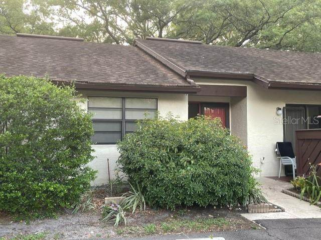 4038 Corkwood Court, Palm Harbor, FL 34684 (MLS #T3301303) :: Cartwright Realty