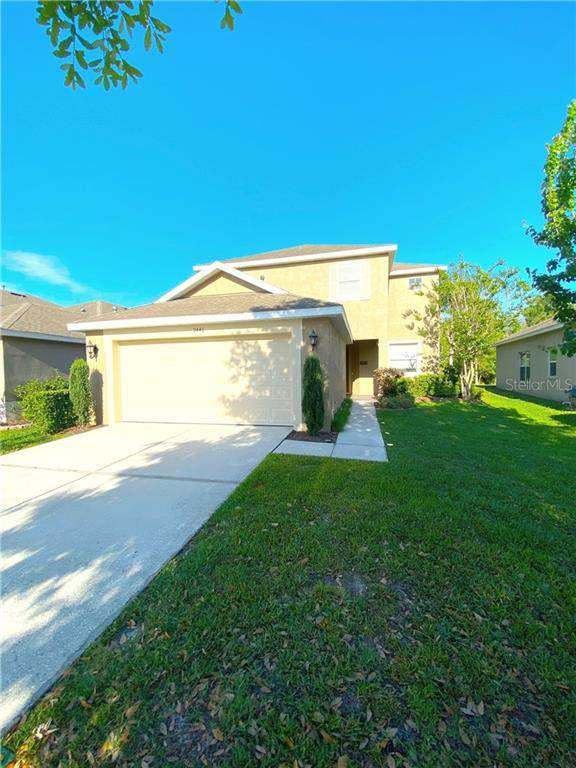 9446 Leatherwood Avenue, Tampa, FL 33647 (MLS #T3301693) :: Team Bohannon Keller Williams, Tampa Properties