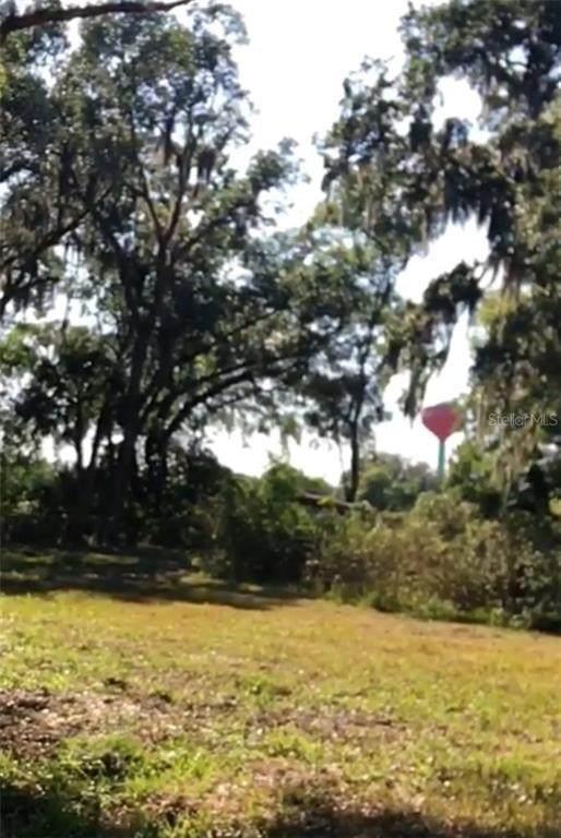 2034 Pleasant Acre Drive, Plant City, FL 33566 (MLS #T3301742) :: Everlane Realty