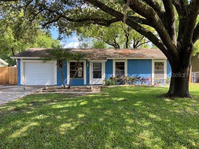 22703 Newfield Court, Land O Lakes, FL 34639 (MLS #T3301810) :: RE/MAX Premier Properties