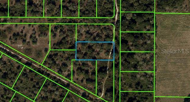 205 Serene Lane, Lorida, FL 33857 (MLS #T3301866) :: The Hesse Team