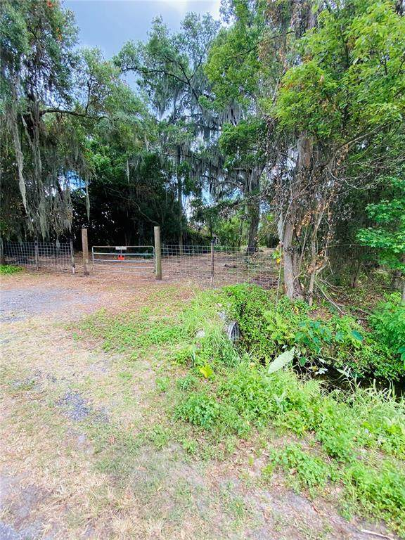 13043 Tom Gallagher Road, Dover, FL 33527 (MLS #T3301947) :: The Hesse Team