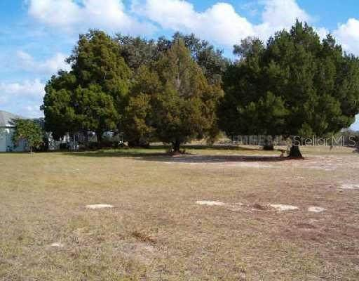 35035 Mahogany Court, Dade City, FL 33523 (MLS #T3302314) :: The Hesse Team