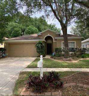 713 Parsons Pointe Street, Seffner, FL 33584 (MLS #T3302328) :: Kelli and Audrey at RE/MAX Tropical Sands