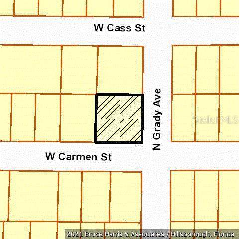 4001 W Carmen Street, Tampa, FL 33609 (MLS #T3303327) :: Frankenstein Home Team