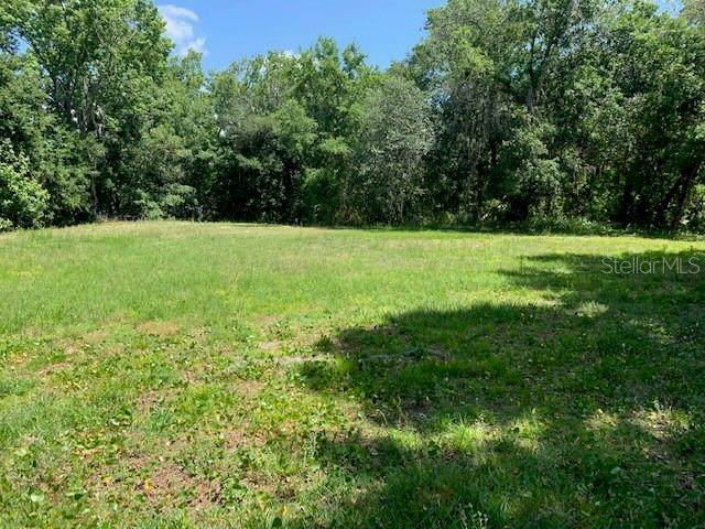 Lot 26 Lake Hills Drive, Riverview, FL 33569 (MLS #T3304247) :: Rabell Realty Group