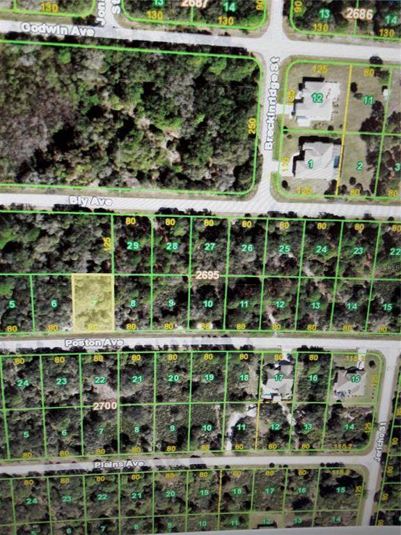 17440 Poston Avenue, Port Charlotte, FL 33948 (MLS #T3304298) :: CGY Realty