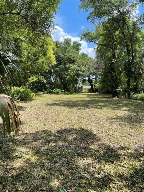 6215 Eugene Avenue, Tampa, FL 33619 (MLS #T3304806) :: Griffin Group