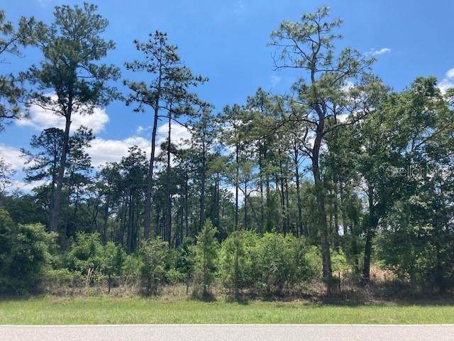 Ayers Road, Brooksville, FL 34604 (MLS #T3304957) :: Southern Associates Realty LLC