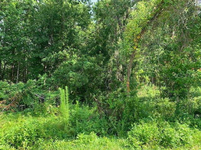 Lot 19 Lake Hills Drive, Riverview, FL 33569 (MLS #T3304987) :: MVP Realty