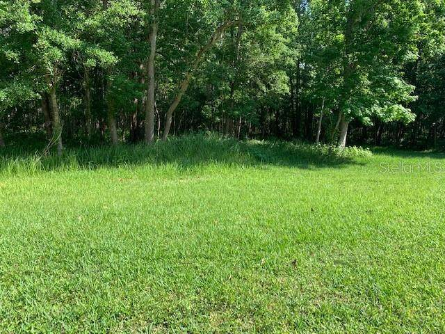 Lot 20 Lake Hills Drive, Riverview, FL 33569 (MLS #T3304989) :: Rabell Realty Group
