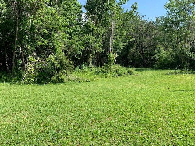 Lot 21 Lake Hills Drive, Riverview, FL 33569 (MLS #T3304992) :: Positive Edge Real Estate