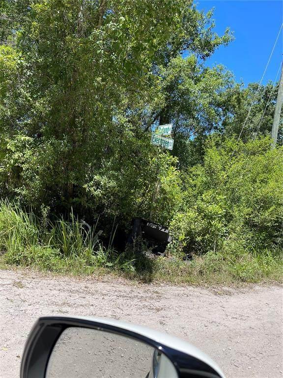 Ryland & Evergreen, New Port Richey, FL 34654 (MLS #T3306036) :: Southern Associates Realty LLC
