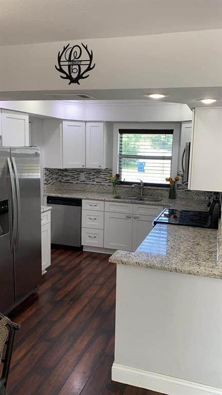 4220 Dristol Avenue, Spring Hill, FL 34609 (MLS #T3306407) :: Team Pepka