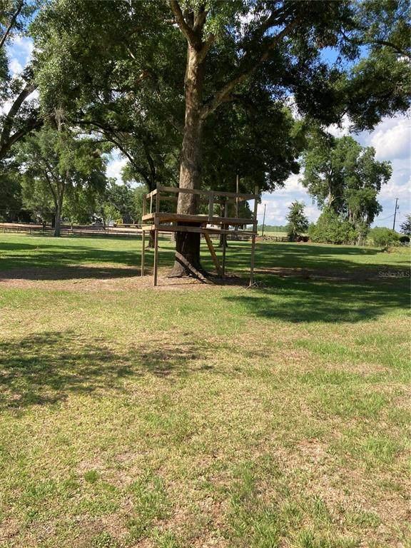 40226 Stewart Road, Zephyrhills, FL 33540 (MLS #T3307089) :: The Kardosh Team