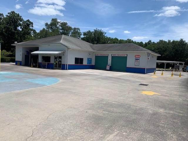 Plant City, FL 33563 :: Everlane Realty