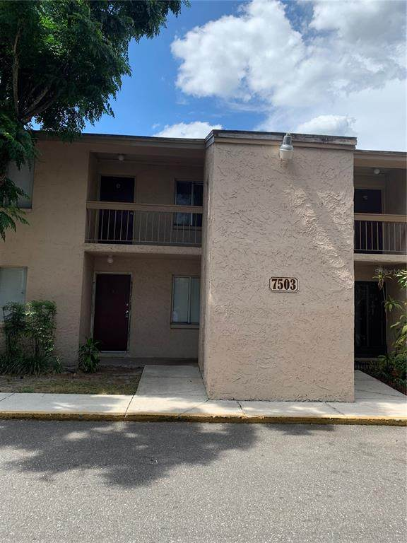 7503 Pitch Pine Circle #74, Tampa, FL 33617 (MLS #T3308281) :: Rabell Realty Group