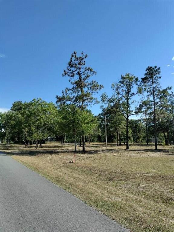 6300 S Gross Avenue, Homosassa, FL 34446 (MLS #T3309921) :: Gate Arty & the Group - Keller Williams Realty Smart