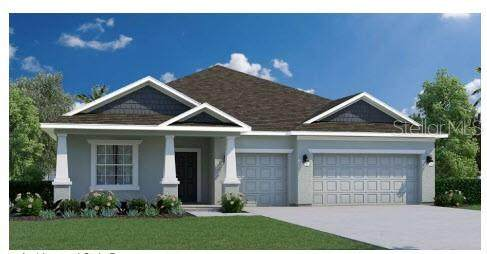 TBD SW 111TH Place, Ocala, FL 34476 (MLS #T3310184) :: Griffin Group
