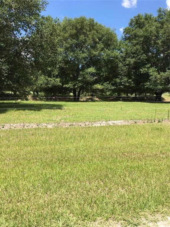 Cr 546A, Bushnell, FL 33513 (MLS #T3310787) :: Stellar Home Sales