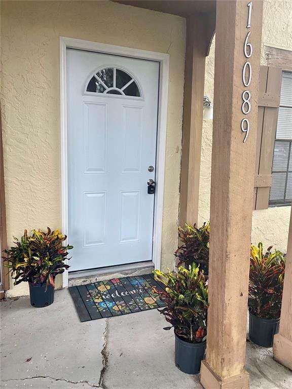 16089 Dawnview Drive, Tampa, FL 33624 (MLS #T3310936) :: RE/MAX Local Expert