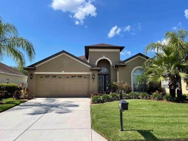 11533 Bathgate Court, New Port Richey, FL 34654 (MLS #T3311695) :: Zarghami Group