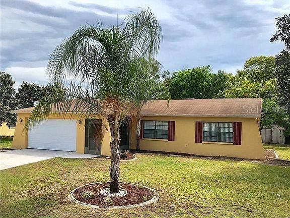 13359 Banyan Road, Spring Hill, FL 34609 (MLS #T3312013) :: Pepine Realty