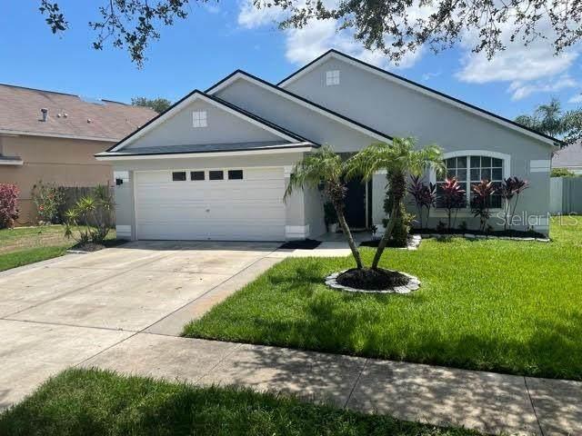 6241 Crickethollow Drive, Riverview, FL 33578 (MLS #T3312173) :: BuySellLiveFlorida.com