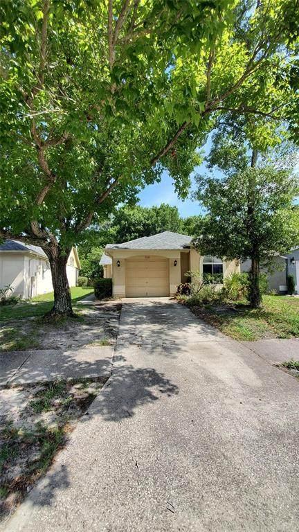11626 Hidden Hollow Cir, Tampa, FL 33635 (MLS #T3313016) :: Burwell Real Estate
