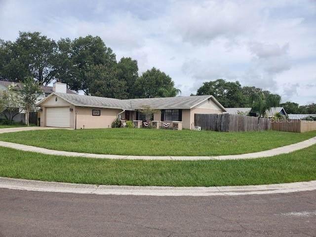733 Caliente Drive, Brandon, FL 33511 (MLS #T3313271) :: The Nathan Bangs Group