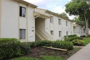 284 Cypress Lane #56, Oldsmar, FL 34677 (MLS #T3313593) :: Kelli and Audrey at RE/MAX Tropical Sands