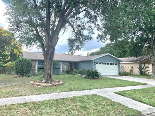 15105 Lake Holly Place, Tampa, FL 33625 (MLS #T3313762) :: Charles Rutenberg Realty