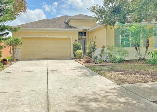 17445 New Cross Circle, Lithia, FL 33547 (MLS #T3313849) :: Your Florida House Team