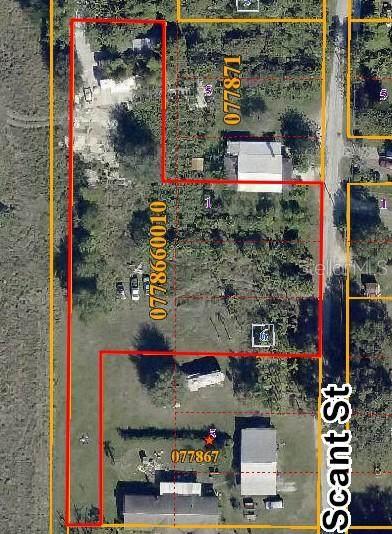 Scant Street, Wimauma, FL 33598 (MLS #T3314040) :: Keller Williams Realty Peace River Partners