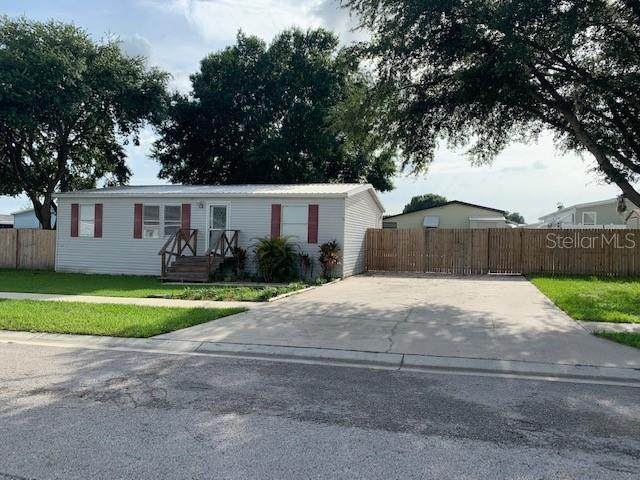 3925 Kiah Drive, Wesley Chapel, FL 33543 (MLS #T3314267) :: Zarghami Group
