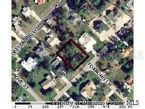 3325 Abeline Road, Spring Hill, FL 34608 (MLS #T3314752) :: Alpha Equity Team