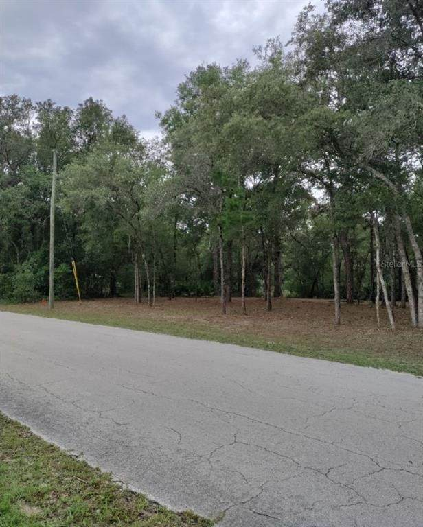 10446 Rousseau Drive - Photo 1