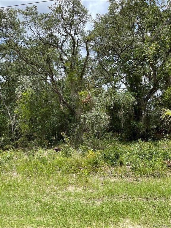 5837 W Vikre Path, Homosassa, FL 34448 (MLS #T3315139) :: Premium Properties Real Estate Services