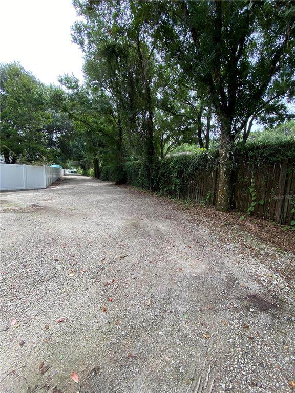 12604 Casey Road, Tampa, FL 33618 (MLS #T3317950) :: Zarghami Group